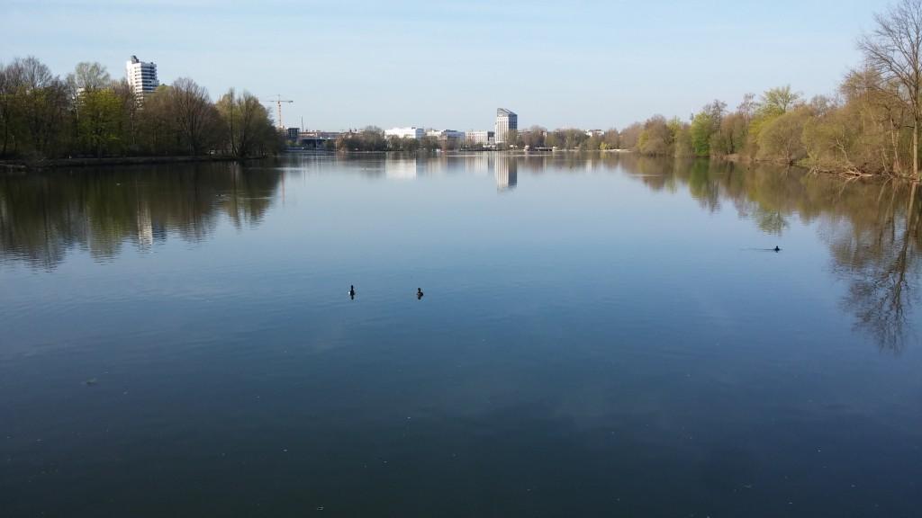 Der algenfreie Untere Wöhrder See