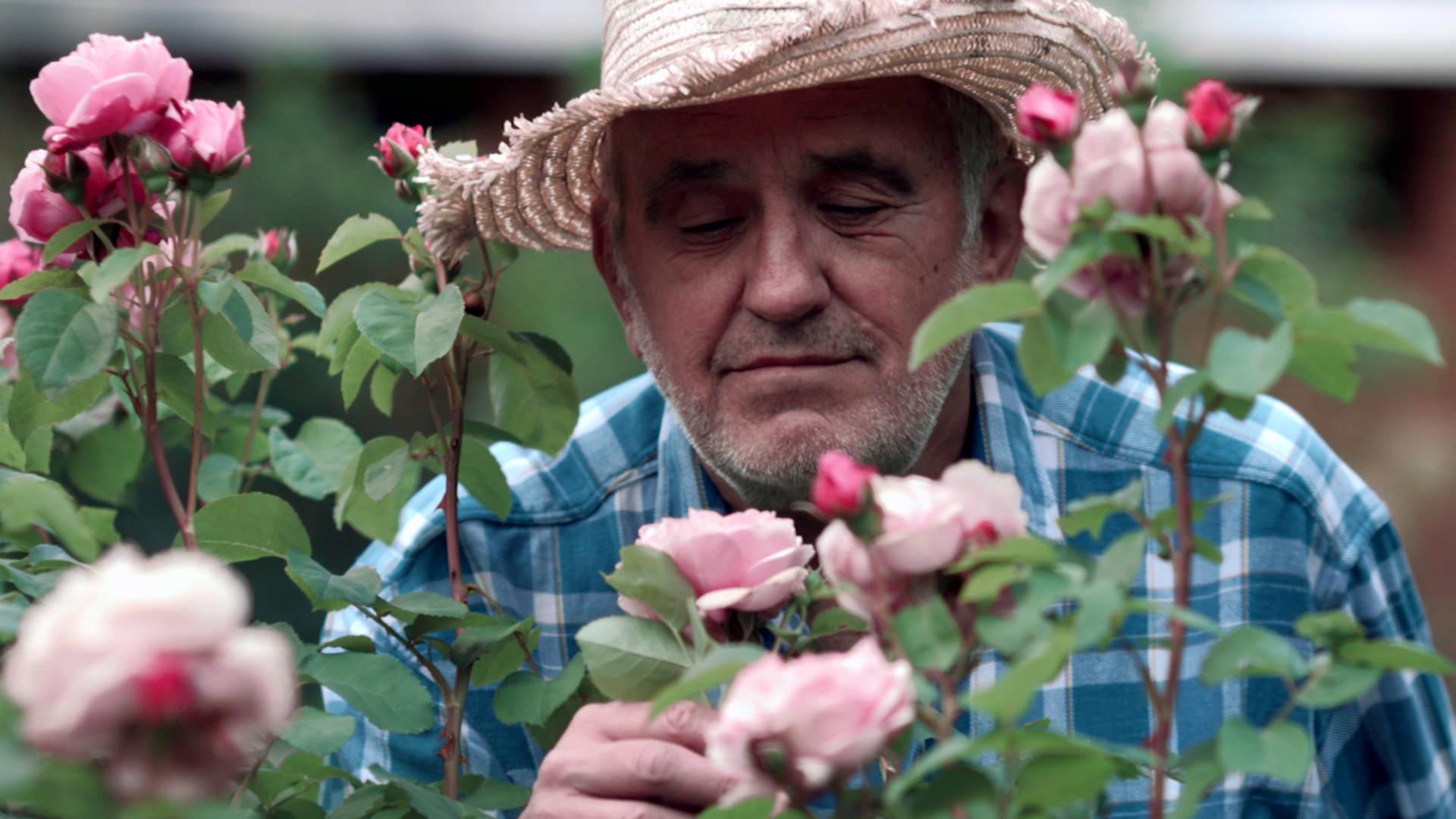 """Der Rentner aus """"Capito"""" in seinem Garten; Quelle: TH Nürnberg Fakultät Design"""